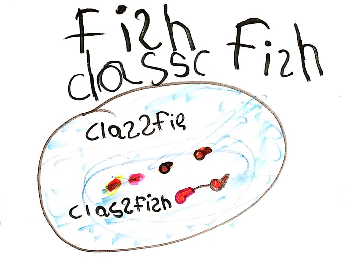 "They named this fish""class fish"""