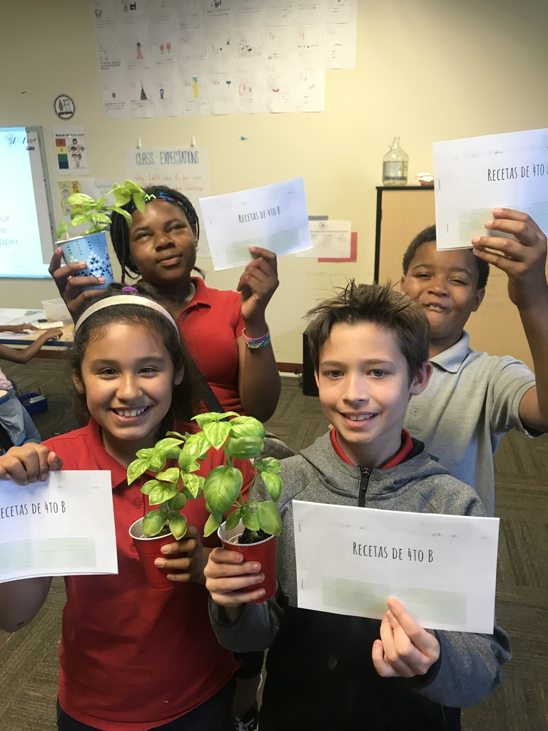We are taking the basil home!